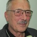 Wilfried Engeln